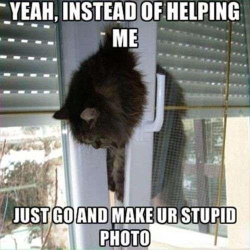 Sì, invece di aiutarmi - basta andare ank fare ur foto stupido