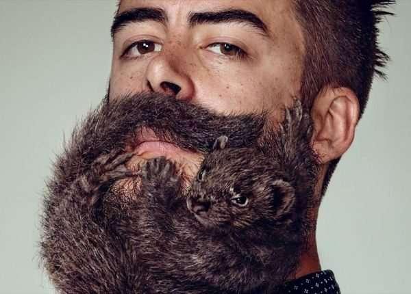 beard fun and creative