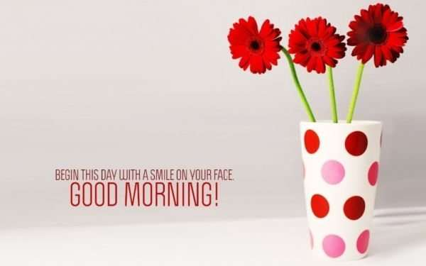 Good morning with red flowers