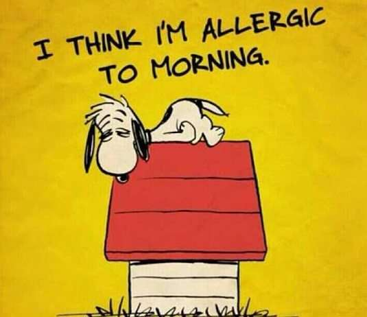 Good Morning Snoopy Wednesday : Snoopy and the morning goodmorningpics