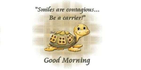 quotes Smiles