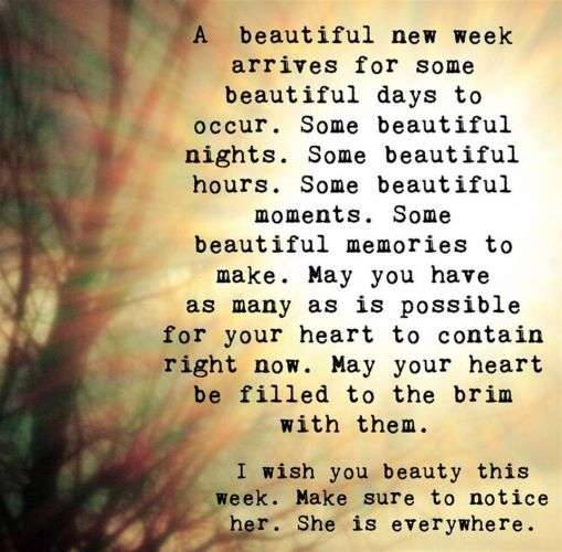 A beautiful new week arrives