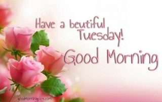 Good Morning Tuesday Pics Goodmorningpicscom
