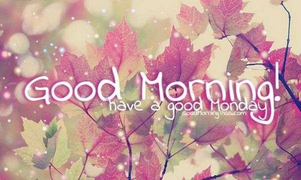 Good Morning Monday Pics Goodmorningpicscom