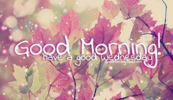 GoodMorning autumn picture