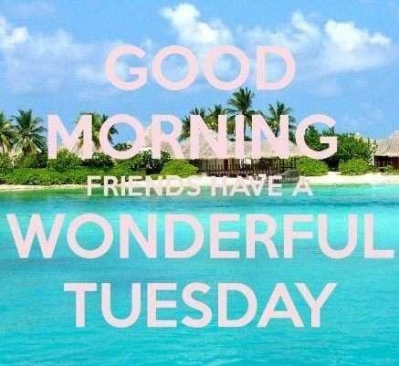 Wonderful day Friends