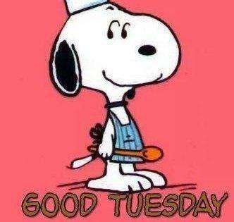 Good Tuesday snoopy