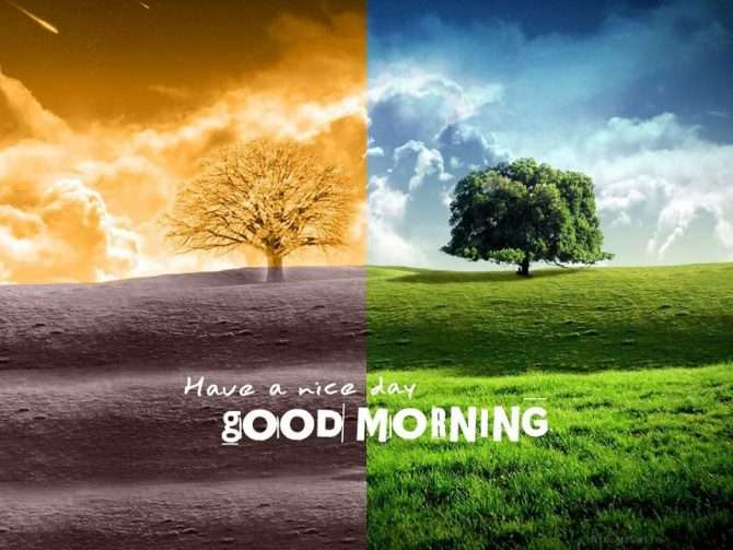 Good morning Seaso