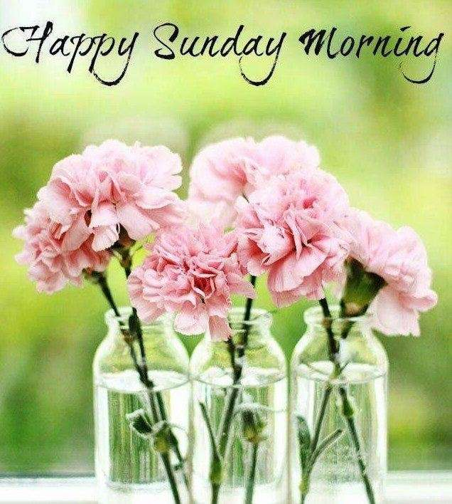 happy sunday with flowers