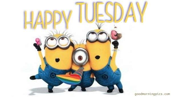 Happy Tuesday Wishes Quote