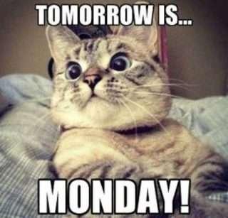 Tomorrow-Is-Monday
