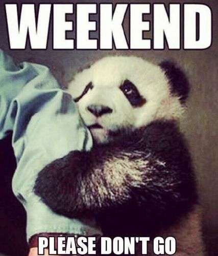 WEEKEND please don't go | goodmorningpics.com