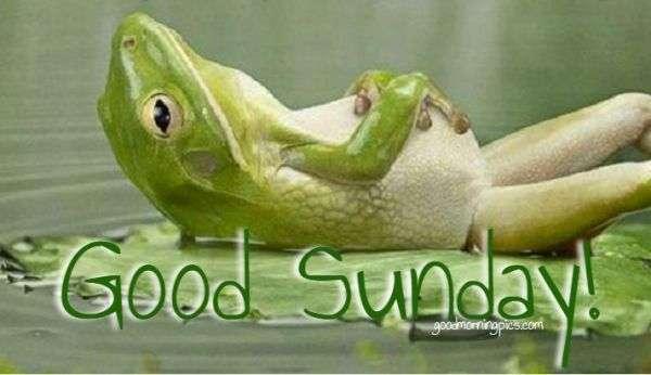 Good Sunday! | goodmorningpics.com