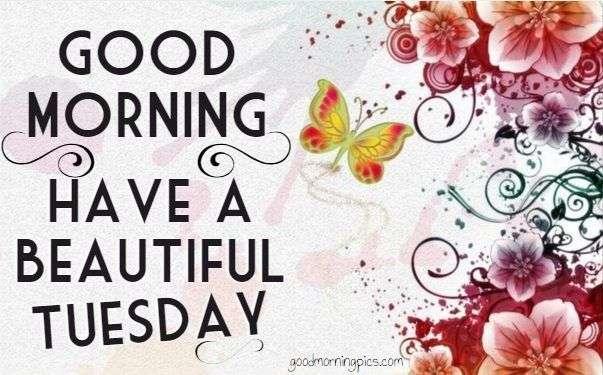 Good Morning Tuesday Images : Good morning tuesday pics quotes goodmorningpics