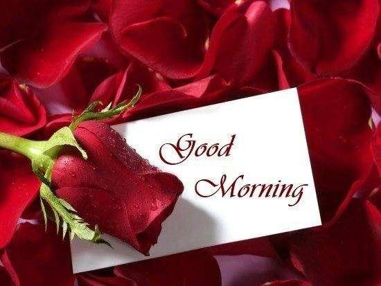 Beautiful goodmorning | goodmorningpics.com