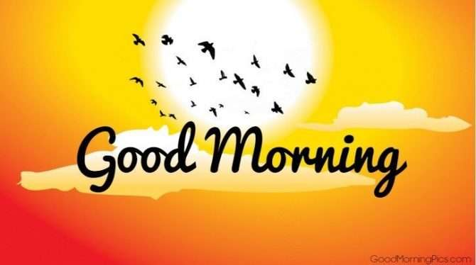 Goodmorning Images Sms Wallpaper With Sun