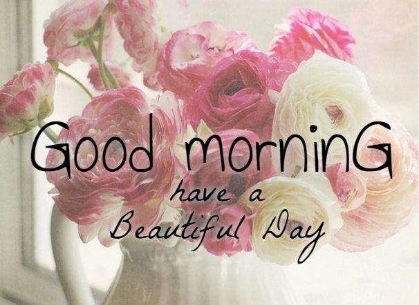 Goodmorning flowers | goodmorningpics com