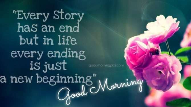 Quotes morning