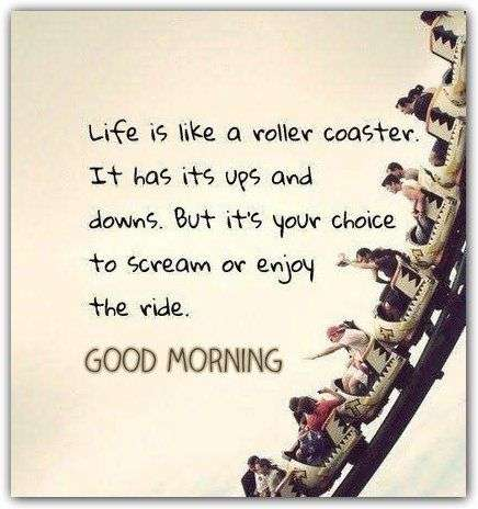 Life Is Like A Roller Coaster Goodmorningpics Com