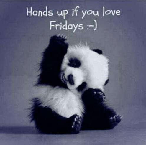 Funny Friday Quotes Goodmorning Funny Friday | goodmorningpics.com Funny Friday Quotes