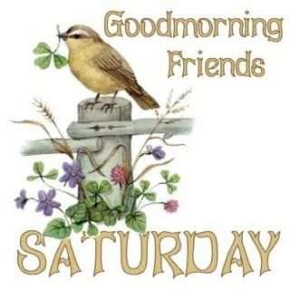 good-morning-saturday