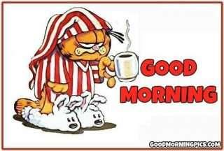 goodmorning-funny
