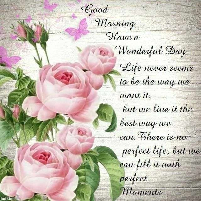 Good Morning Pics Flowers Images And Quotes