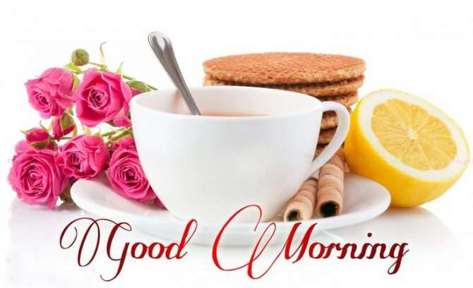 Good morning pics - Wallpaper (3)