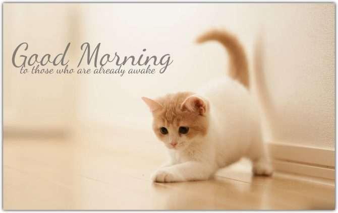 Good Morning Cute Pics Goodmorningpicscom