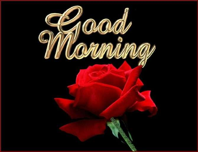 Good morning lover