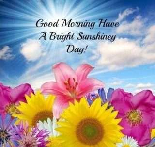 Good Morning Friends Pics Goodmorningpicscom