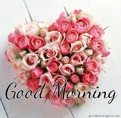 Beautiful Flowers Good Morning