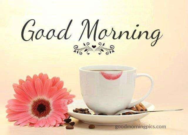 Beautiful good morning for all! | goodmorningpics.com