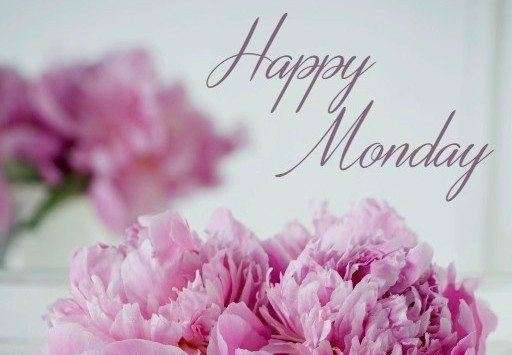 Good morning monday pics quotes goodmorningpics happy monday flowers enlarge share voltagebd Gallery