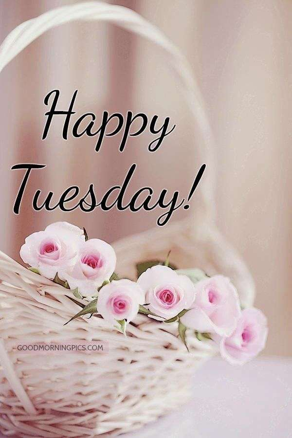 Happy Tuesday additionally Quote Art likewise  likewise  also Hello December Quotes Free Hd Wallappers. on inspirational quotes