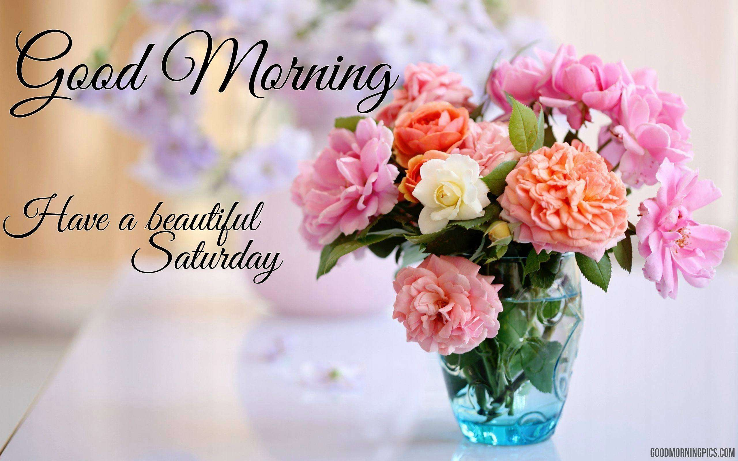 Good morning pics flowers images and quotes share these beautiful flowers and wishes a good saturday to your friends izmirmasajfo