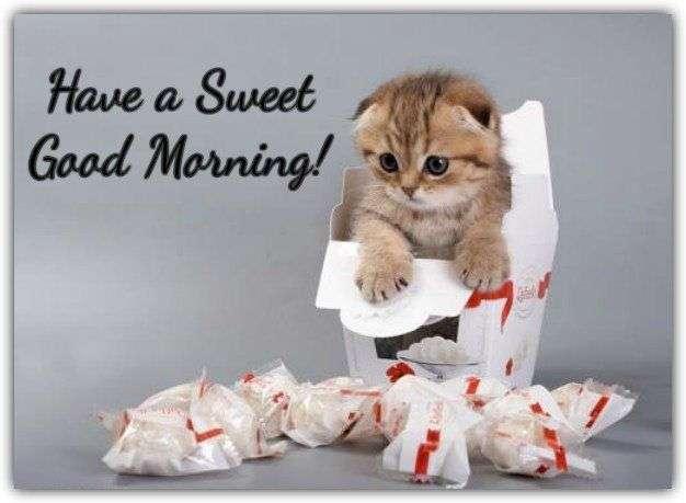 Sweet-good-morning