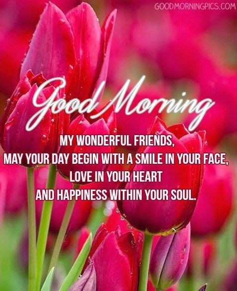 good morning wonderful friends