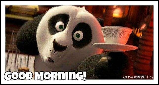 Good morning kung fu panda