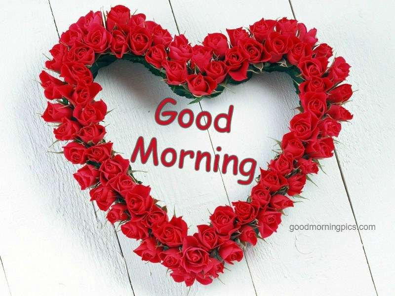 Good Morning Love Pics Goodmorningpicscom