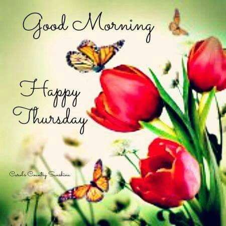 Good Morning Happy Thursday Goodmorningpics Simple Happy Thursday Quotes
