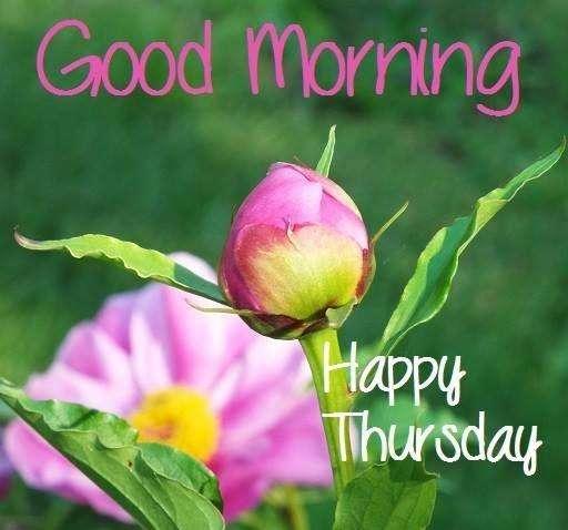 goodmorning-happy-thursday
