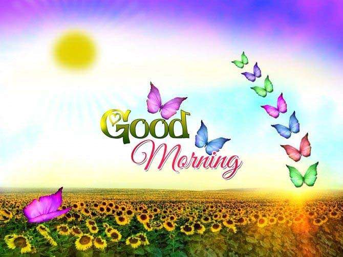 Good-Morning-Wallpaper-friends-with-butterfly-and-sun