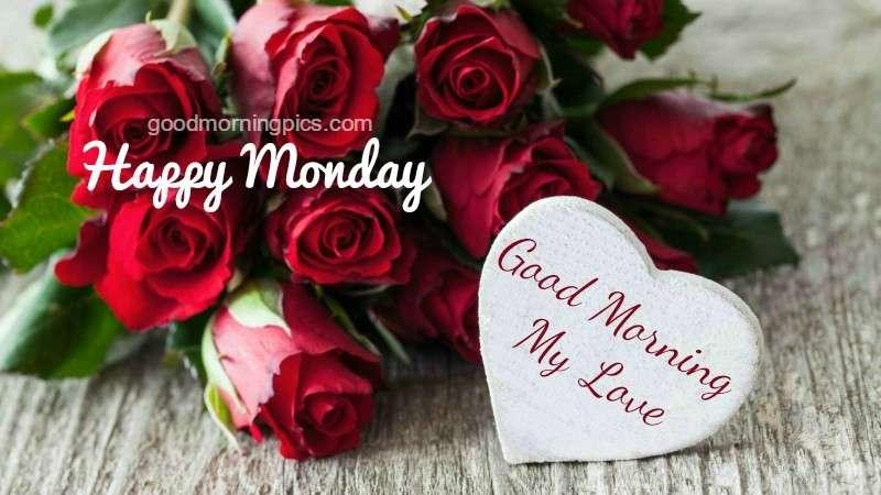 Good Morning Love Flower Image : Good morning my love flowers for you goodmorningpics