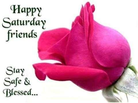 happy saturday friends