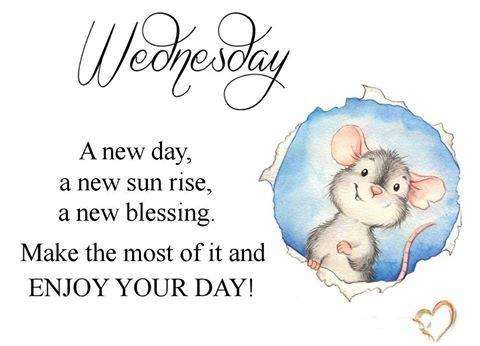 wednesday-images-quote