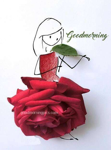 Good Morning Sunday Rose : Good morning red rose and quote goodmorningpics