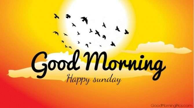 Good Morning Sunday Wallpaper Download : Good morning happy sunday goodmorningpics