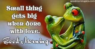 Love phrases with frogs kissing
