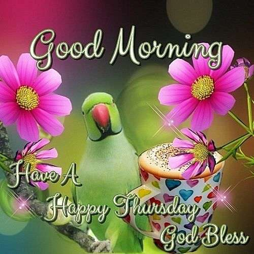 Good Morning Thursday Pics & Quotes | Goodmorningpics.com